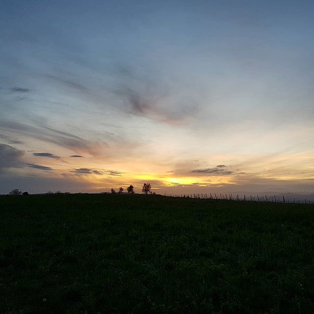 See you tomorrow.  What a great day today turned out to be.  I found 3 new wines for the wine club met lovely new producers and felt the sun on my face.  I hope tomorrow is half as good! . . . . #sunset #instasky #instagood #jacksonandseddon #travelgram #nomad #picoftheday #samsungs8 #nofilter #nofilterneeded #tuscansky #tuscany