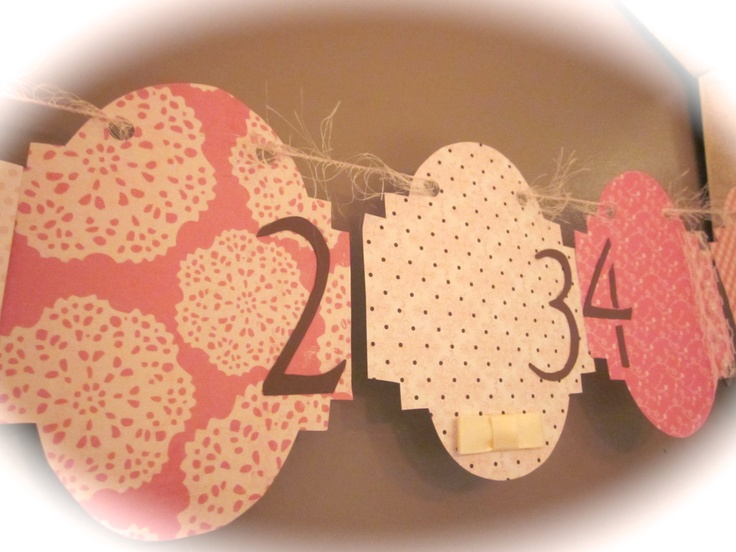 12 month picture banner newborn to one year birthday picture banner. $19.50, via Etsy.