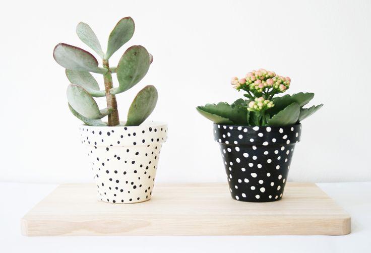 black + white pots