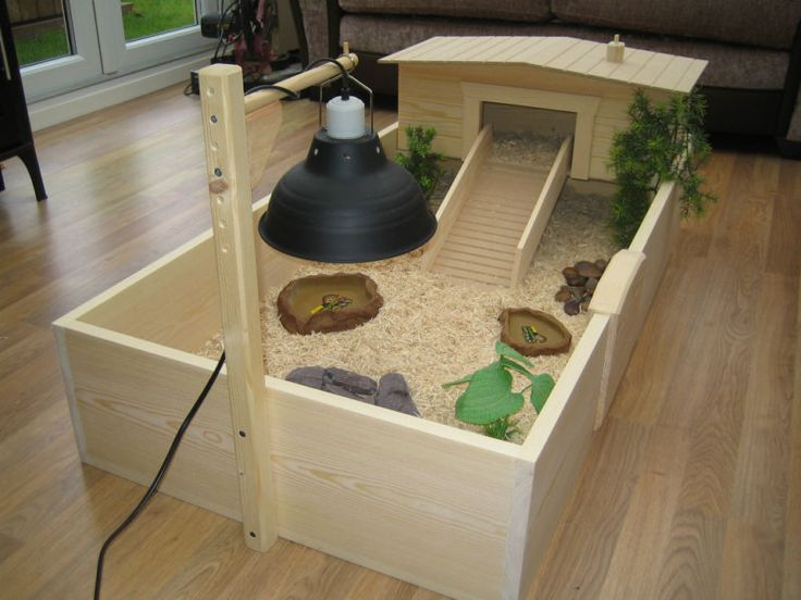 tortoise habitat housing