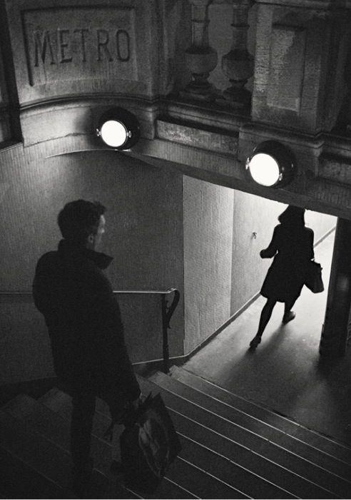 """Feline figure"" Paris Photo: Perfectible"