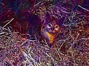 """New artwork for sale! - """" Cat Farm Hay Kitten Haystack  by PixBreak Art """" - http://ift.tt/2w8leQI"""