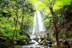 Tempat Wisata Di Indonesia dan Belahan Dunia Lain: Wisata Air Terjun Tawangmangu