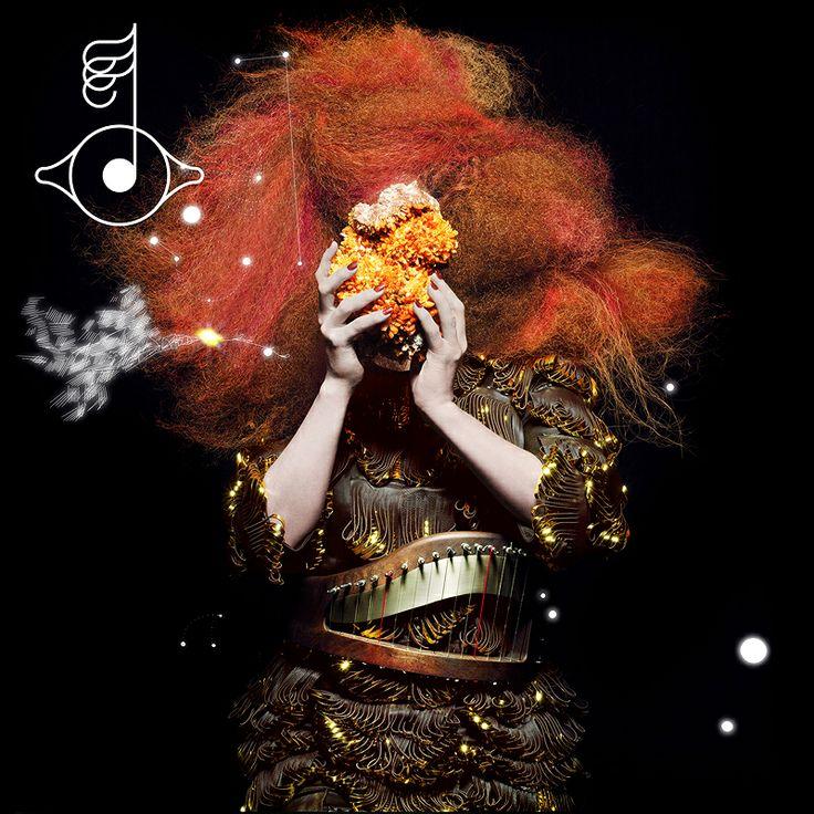 Björk with her crazy hair