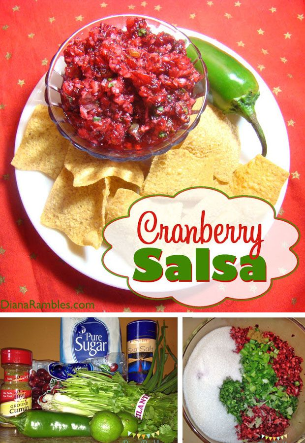 Easy Fresh Cranberry Salsa Recipe - Make this amazing fresh cranberry salsa recipe, which  is sure to be a hit at all your holiday gatherings.