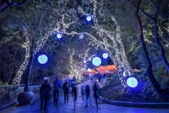 Griffith Park Los Angeles: LA Zoo Lights
