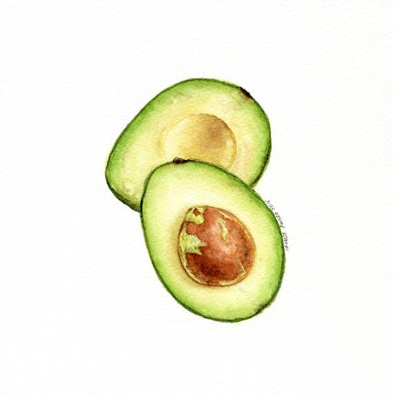 Avocado ORIGINAL Painting Watercolour Wall Art by ForestArtStudio