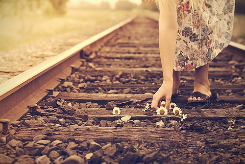 ..: Picture, Train Tracks, Taylor Swift, Inspiration, Life, Quotes, Things, Flower, Photography