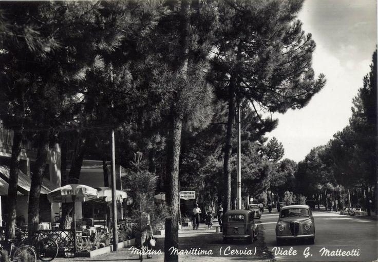 Hans Hinner percorre una rotatoria, supera il piccolo ponte che conduce in viale Matteotti, a Milano Marittima, frazione di Cervia. Pini e ginepri sopravvivono agli abbattimenti ottocenteschi, alla vendita di terreni demaniali, alla privatizzazione dello spazio, ai villini liberty.