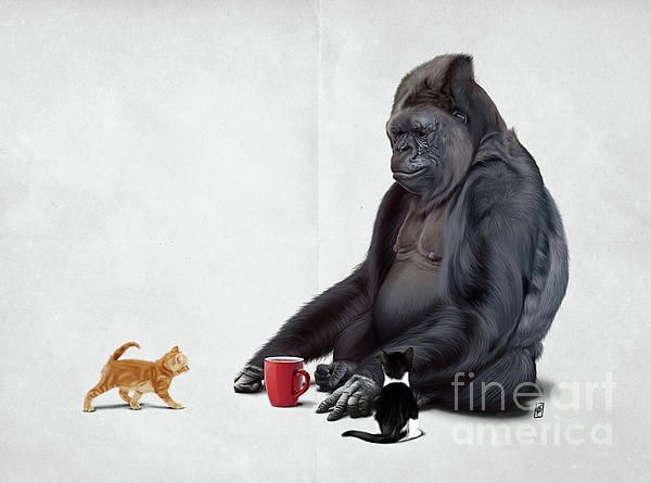 I Should, Koko art | decor | wall art | inspiration | animals | home decor | idea | humor | gifts