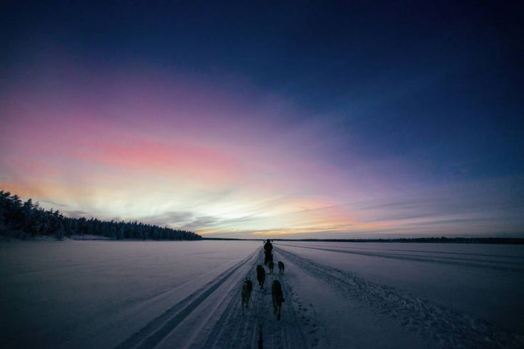 Captivating Pictures from Finnish Winter – Fubiz Media