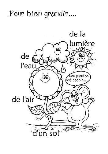 Qu'est-ce qu'il faut pour bien grandir? What do plants need to grow? - simple, but useful activity for spring in French - le printemps en français