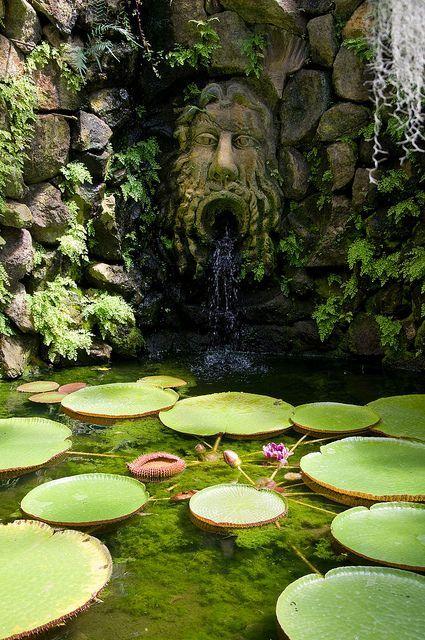 Waterfall, Serra della Victoria, Giardini La Mortella by Richard Amor Allan