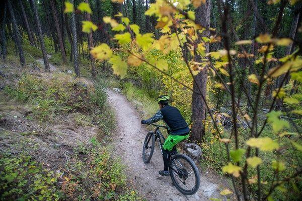 Whitefish Mountain Bike