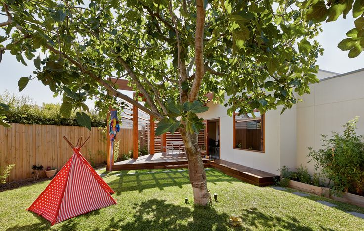 Crib & Chock by windust architecture + design.  Celebrated an existing fig tree.
