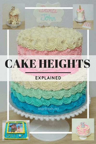 Cake Heights Explained | Let's talk about the different cake heights - slab (or sheet) cake, single tier, 2 tier, extended & double barrel. Which is the best option for the cake decorator?