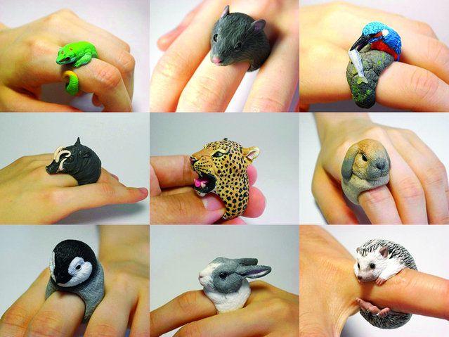 Anillos de animales por el artista japonés Jiro Miura