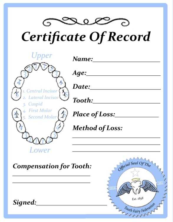 Lost Tooth Certificate of Record - Blue