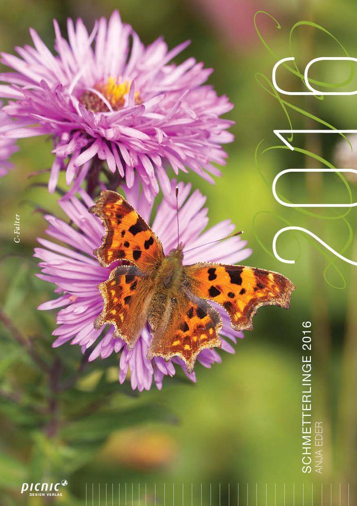 12 verschiedene schmetterlingsarten schmetterlinge kalender 2016 insekten bienen und. Black Bedroom Furniture Sets. Home Design Ideas