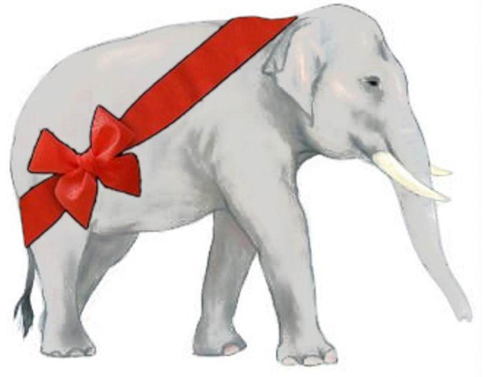 Best 25+ White elephant images ideas on Pinterest | White elephant ...
