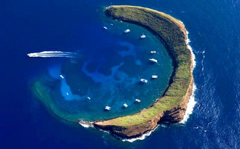 Molokini, Hawaii.  The best place to go snorkeling EVER!