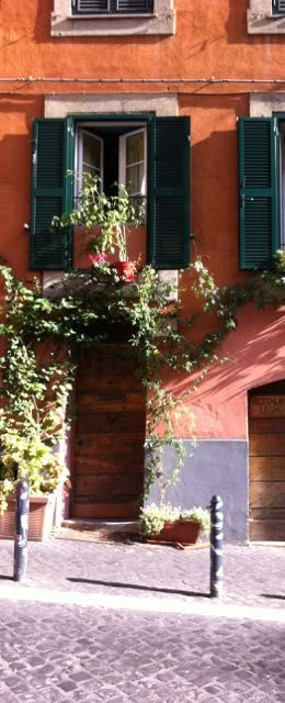 Vines and flowers in Monti, Rome.