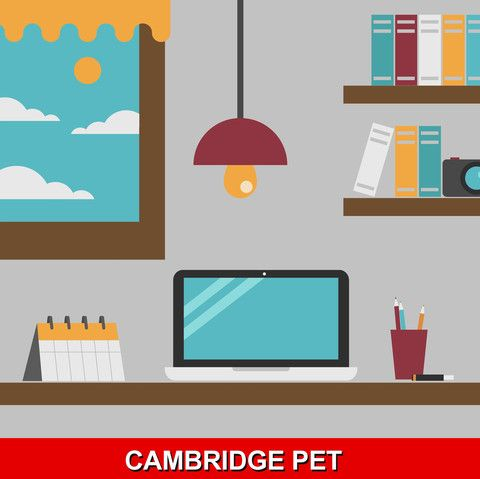 Cambridge PET