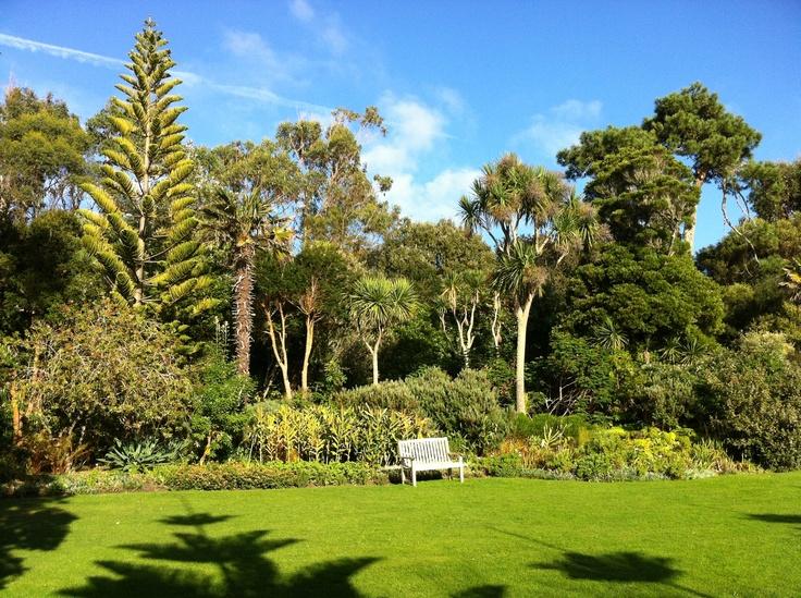 Tresco Abbey Gardens in November