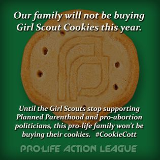 15 best images about girl scouts on pinterest told you