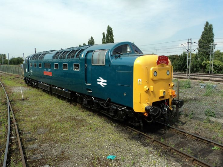 "BR Class 55 ""Deltic"" No. D9002 (55002) ""Kings Own Yorkshire Light Infantry"" - was donated to the National Railway Museum, York and was the first preserved Deltic to return to the main line when it worked light engine to York after participating in the Doncaster Works Open Day on 27 February 1982. D9002 is one of three Deltics to have a mainline licence."