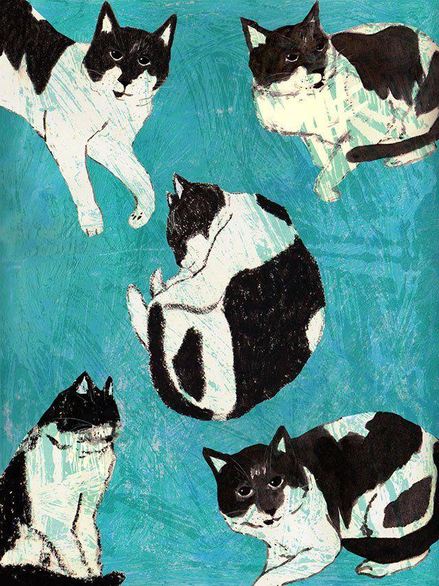 Fabián Valenzuela o Fabián Seis, nació en el norte de Chile, hace un tiempo vive en Santiago y hoy dedica el cien por ciento de su tiempo a la ilustración.