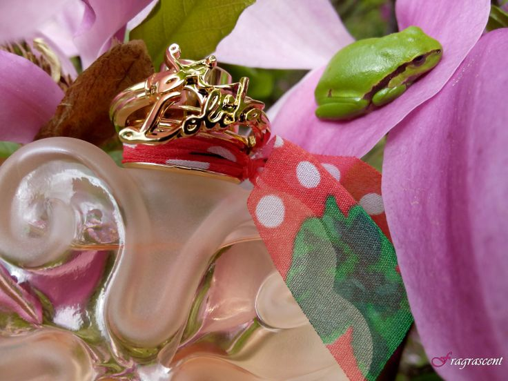 Lolita Lempicka- Si Lolita EDT- perfume review on fragrascent.pl #perfume #fragrance #beauty #lempicka #lolita_lempicka #lolitalempicka #review #perfumy #flakon #perfume_bottle #scent #parfum #silolita #si_lolita #edt #clover #koniczyna #frog #treefrog #tree_frog #rzekotka #rzekotkadrzewna #rzekotka_drzewna #magnolia