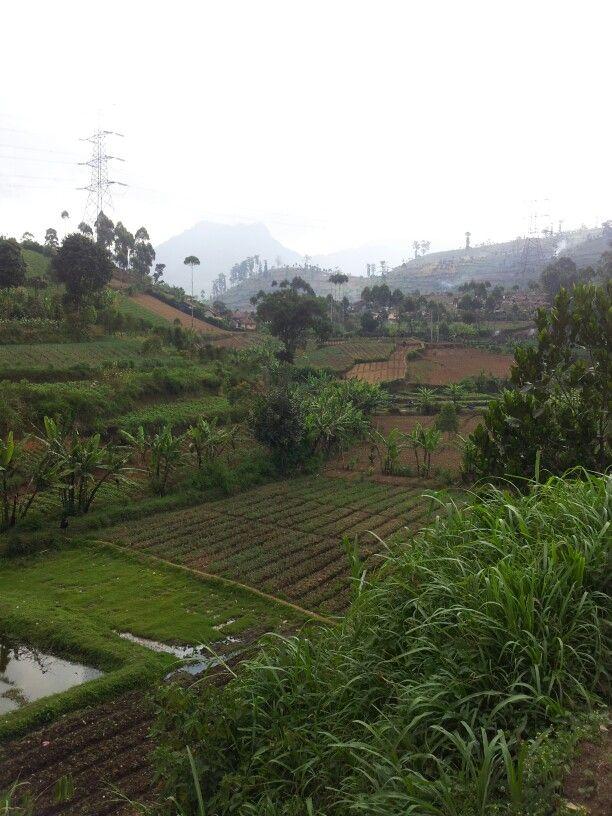 Kertassri Bandung