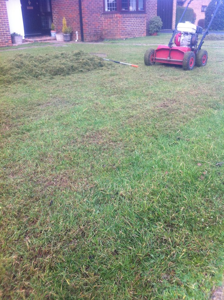 Scarification important towards having a beautiful lawn