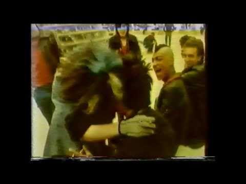 « La Brune et Moi » : Le film culte du punk français que personne n'a vu - Greenroom