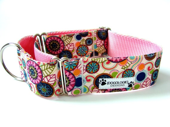 Modern Dog Collar Martingale Collar 15 Modern Flowers by Dogologie, $22.00