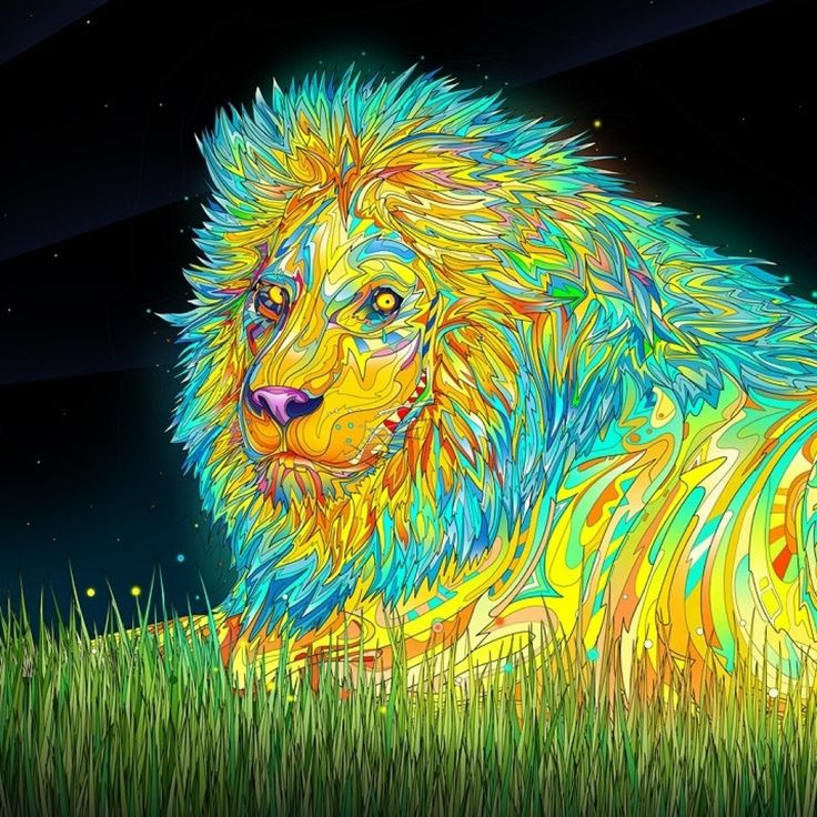 Trippy Live Wallpaper: 736x736px Trippy Lion Wallpaper