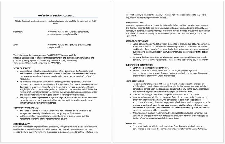 Professional Services Contract Template New 41 New