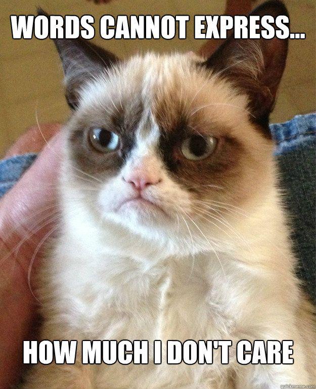 I just don't care - Grumpy Cat