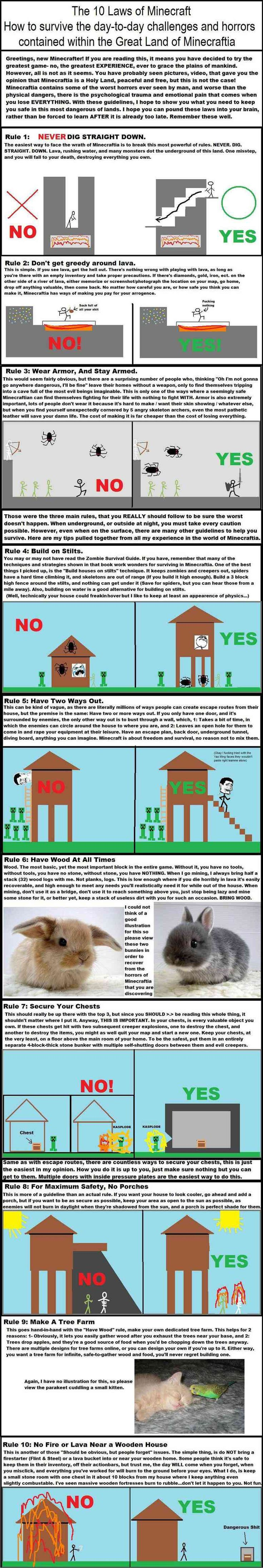 The basic rules of Minecraft. If you want to survive, that is. And these are all true