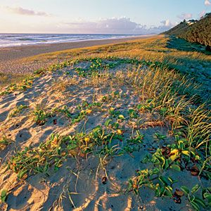 Top 10 Places to Visit This Year | Sunshine Coast, Queensland, Australia | CoastalLiving.com