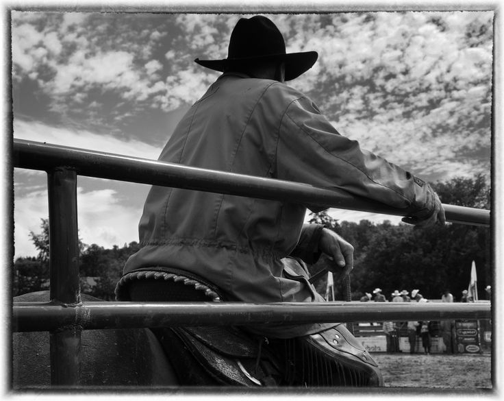 RODEO MASTER BY JUDY GRIFFIN