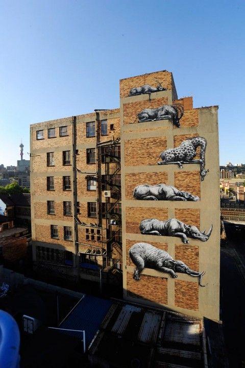 ROA New Mural for I Art Joburg @ Johannesburg, South Africa    www.urbanstylistix.com  www.urban-art-attack.com