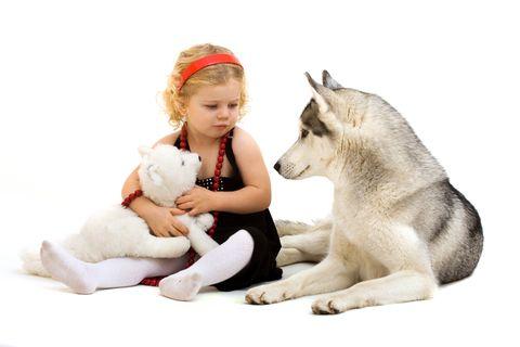 Vacanze di Natale equivalgono a settimane bianche o a brevi viaggi e non sempre è possibile portare con sé il cane o il micio. Ecco le possibili soluzioni.