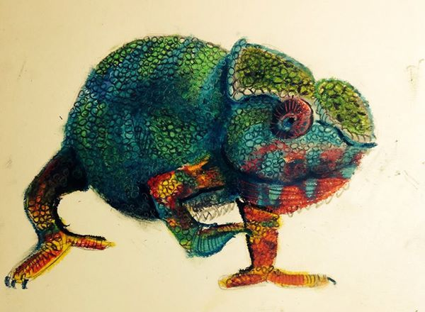 Chameleon, oil pastel and charcoal, by James MacDougall 2014