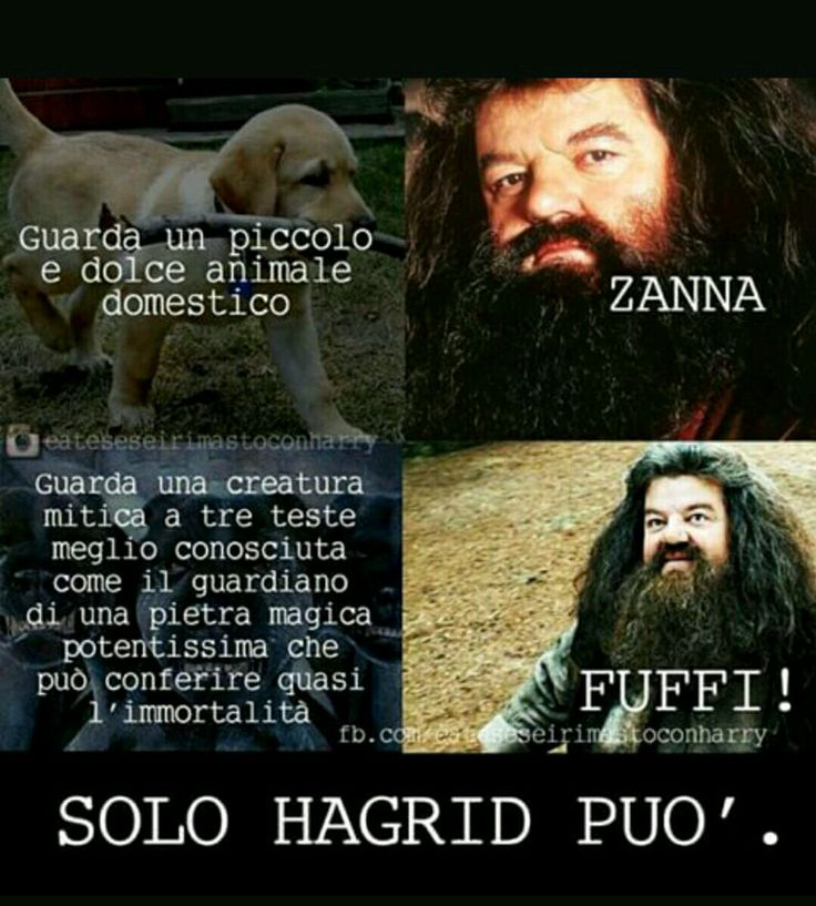 Hagrid is my best friend and shish a tutti