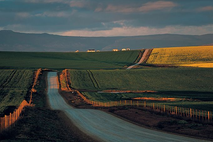 Near Napier in the Overberg, Western Cape, South Africa. Photograph by Jan Reyneke