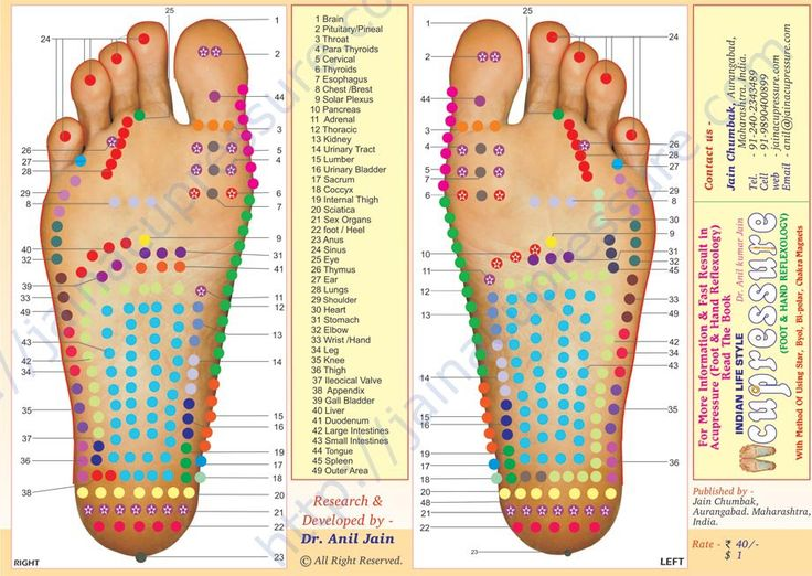 Reflexology Pressure Point Chart | Book on Reflexology, Magnet, byol, Acupressure, Jains Reflexology ...