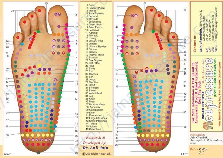 reflexology foot map | Free Foot Reflexology Chart Printable