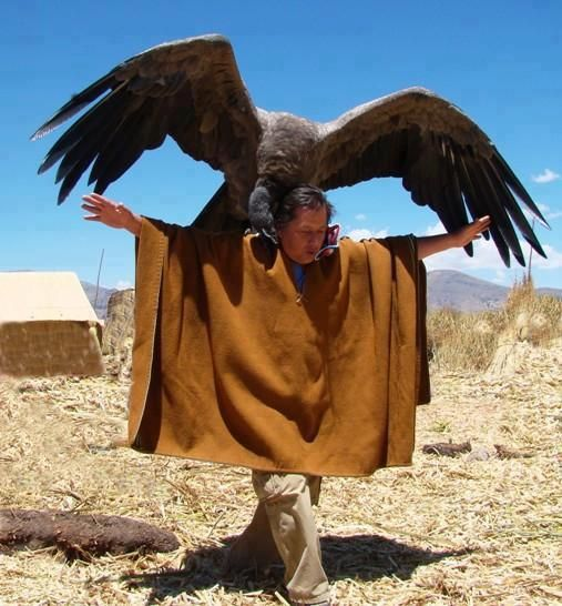 A man and his Condor in Peru. What a wingspan!